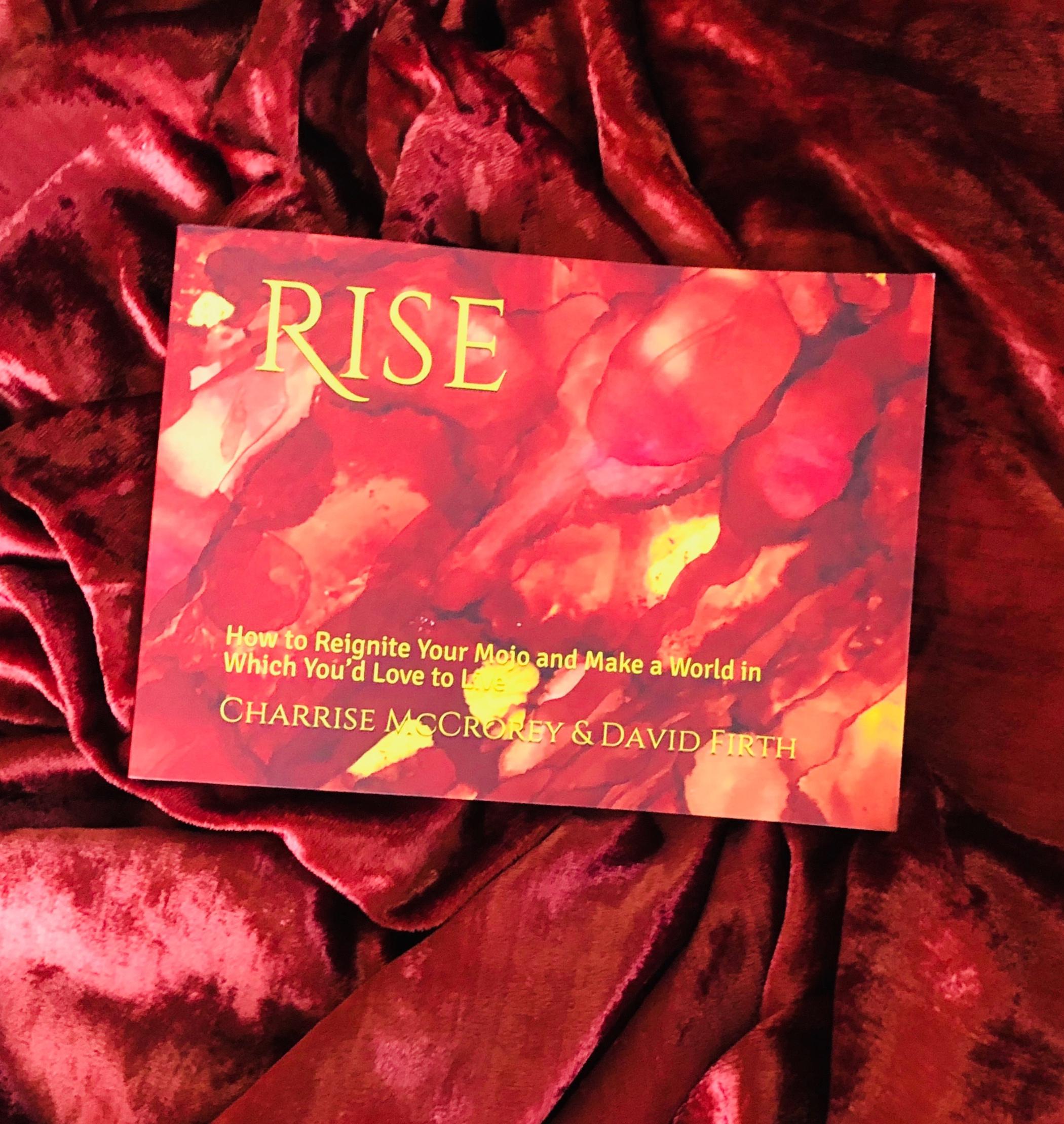 Rise book photo.jpg