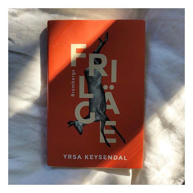 Den här dök upp i mitt flöde hela tiden så jag var tvungen att ta reda på vad hypen handlade om. Och ja, mkt stark debutroman av Yrsa. Lättläst, fångande och vackert.