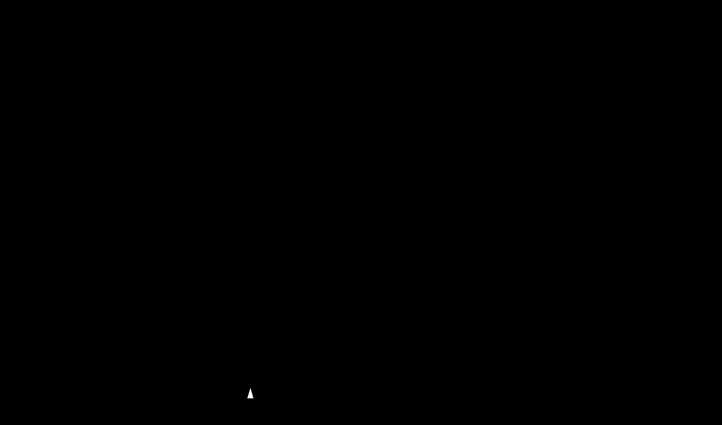 OHOH Transparent Logo .png