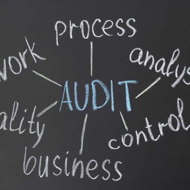 Content Auditing