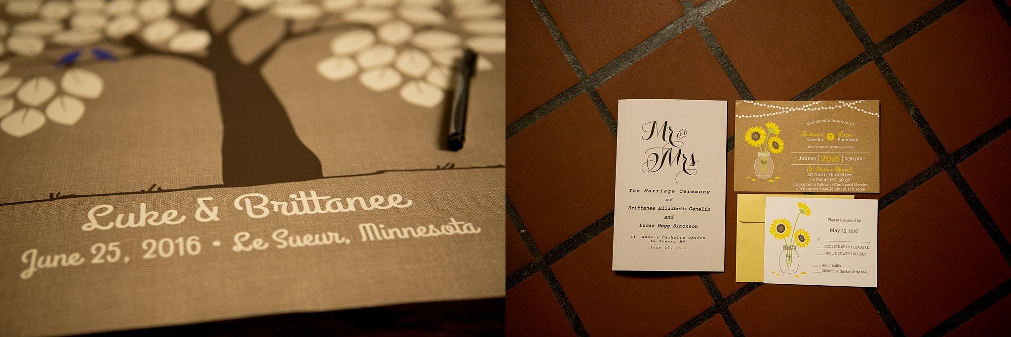2Alice Hq Photography | Brit + Luke Southern MN Wedding.jpg