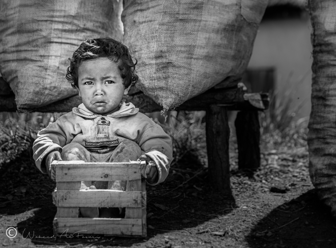 Box Boy | Madagascar