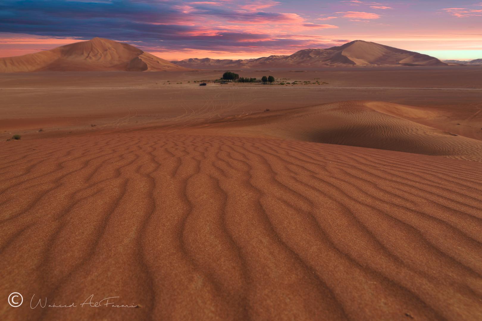 The Empty Quarter   Oman