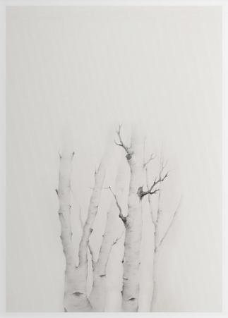 Mytoi Tree 02