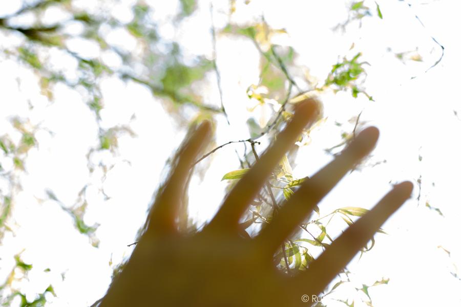 Look-again-ruth-davey-mindful-photography-training-6982.jpg