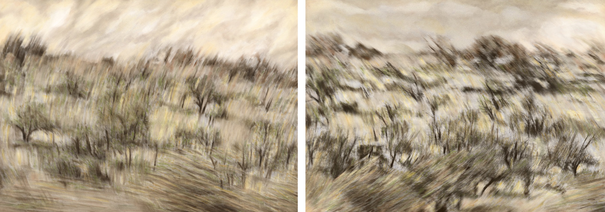 Phenomenon I and Phenomenon II (diptych)