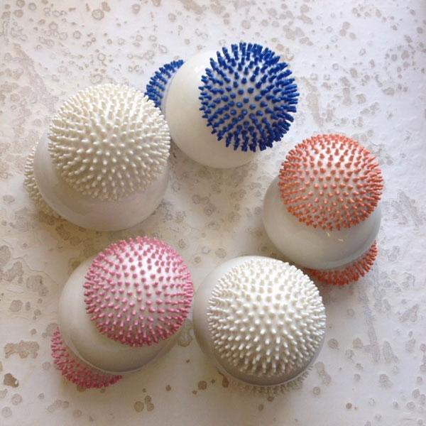 sea-urchin1.jpg