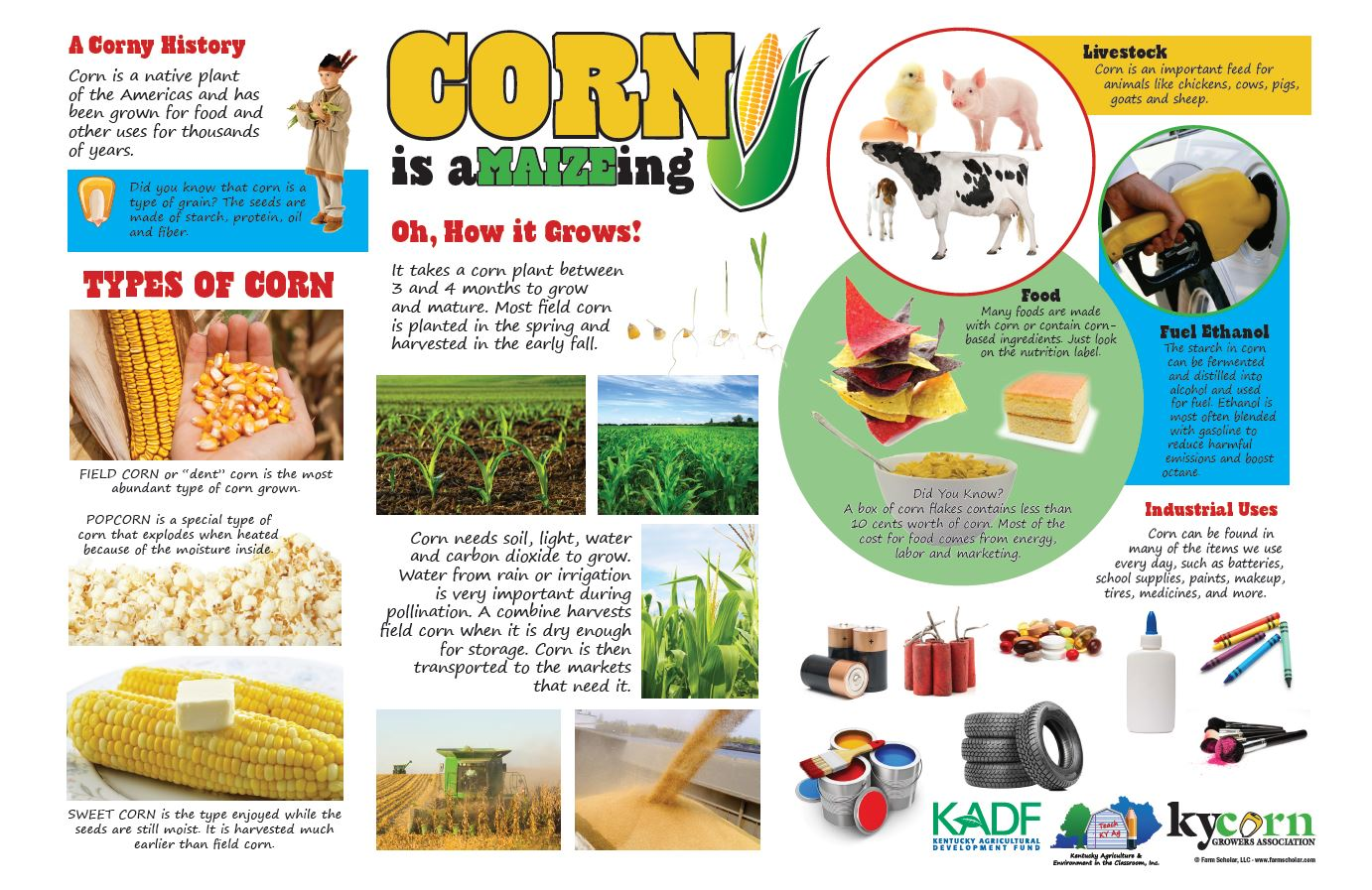 This poster was created to help volunteer educators and teachers tell the story of American corn. If you are interested in this resource, please  contact us .
