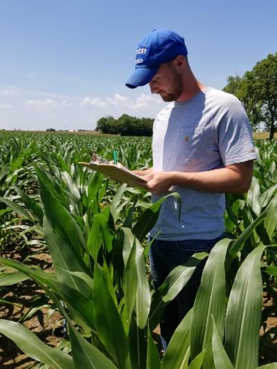 Ph.D. student Dan Quinn evaluates corn response to nitrogen following the rye cover crop.