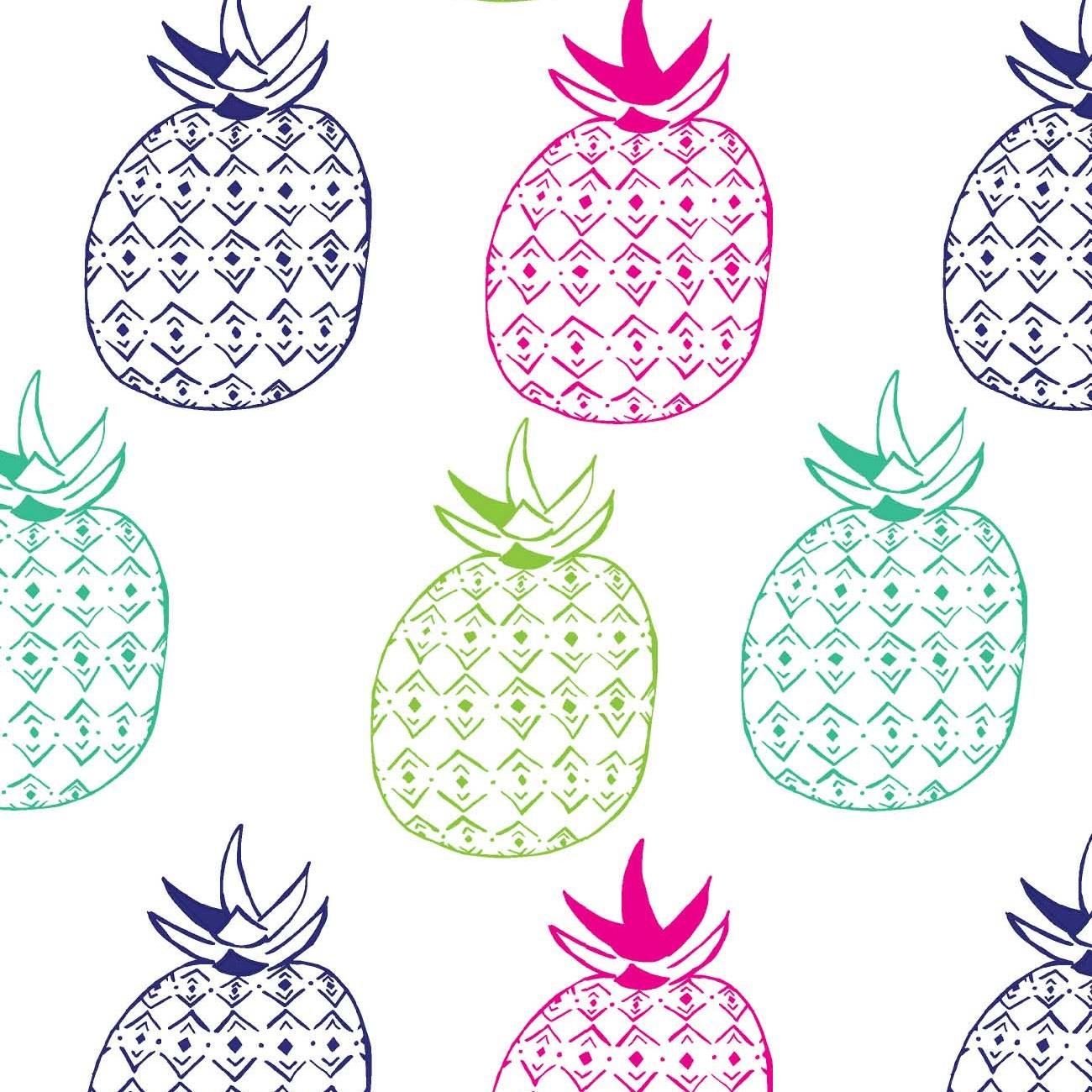pineapple promo.jpg