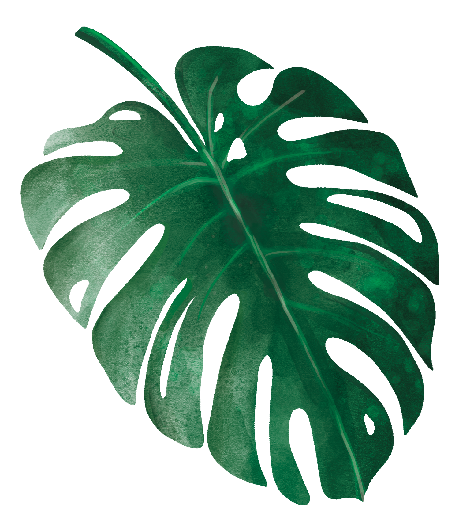tropical_leaves_9.png