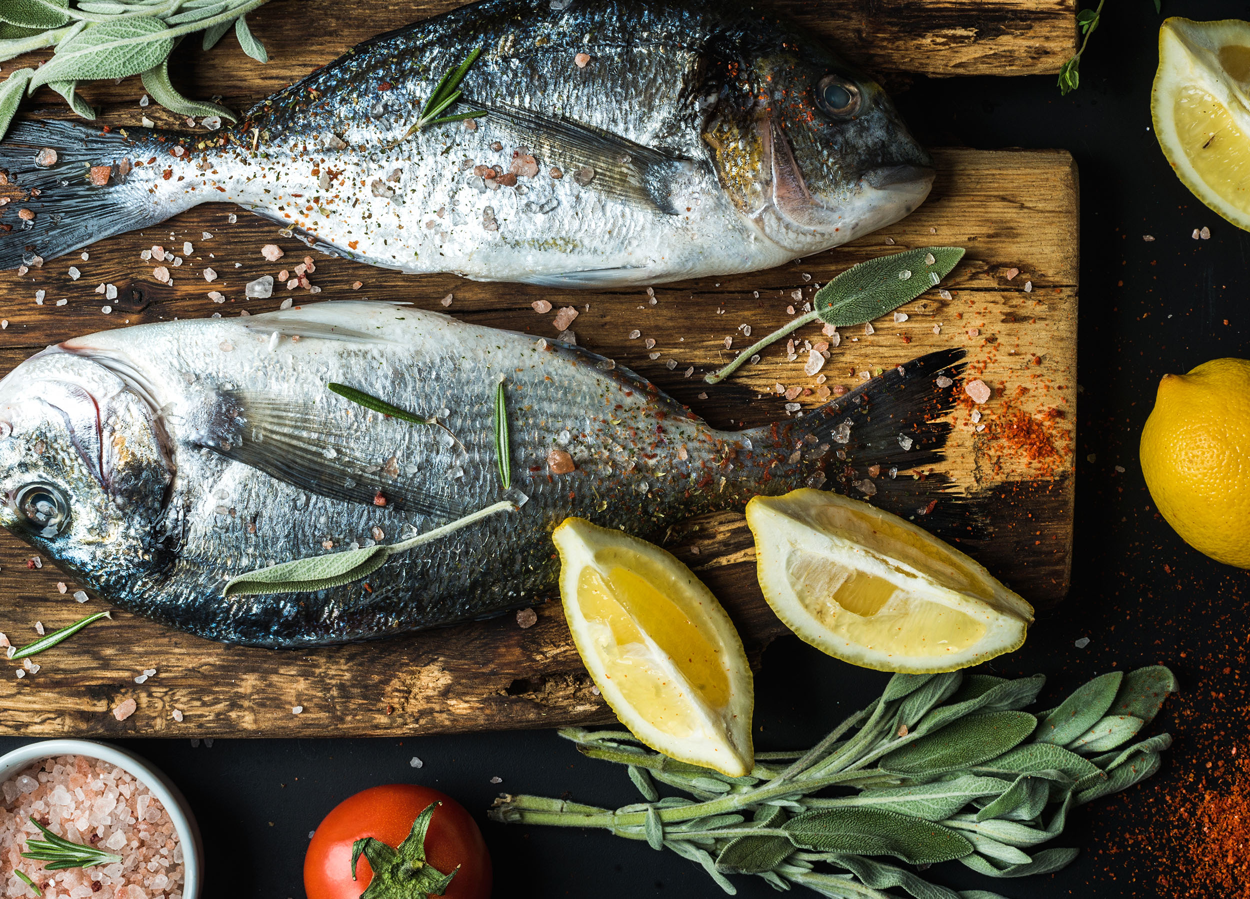 smart catch - Creating Models for Seafood Sustainability