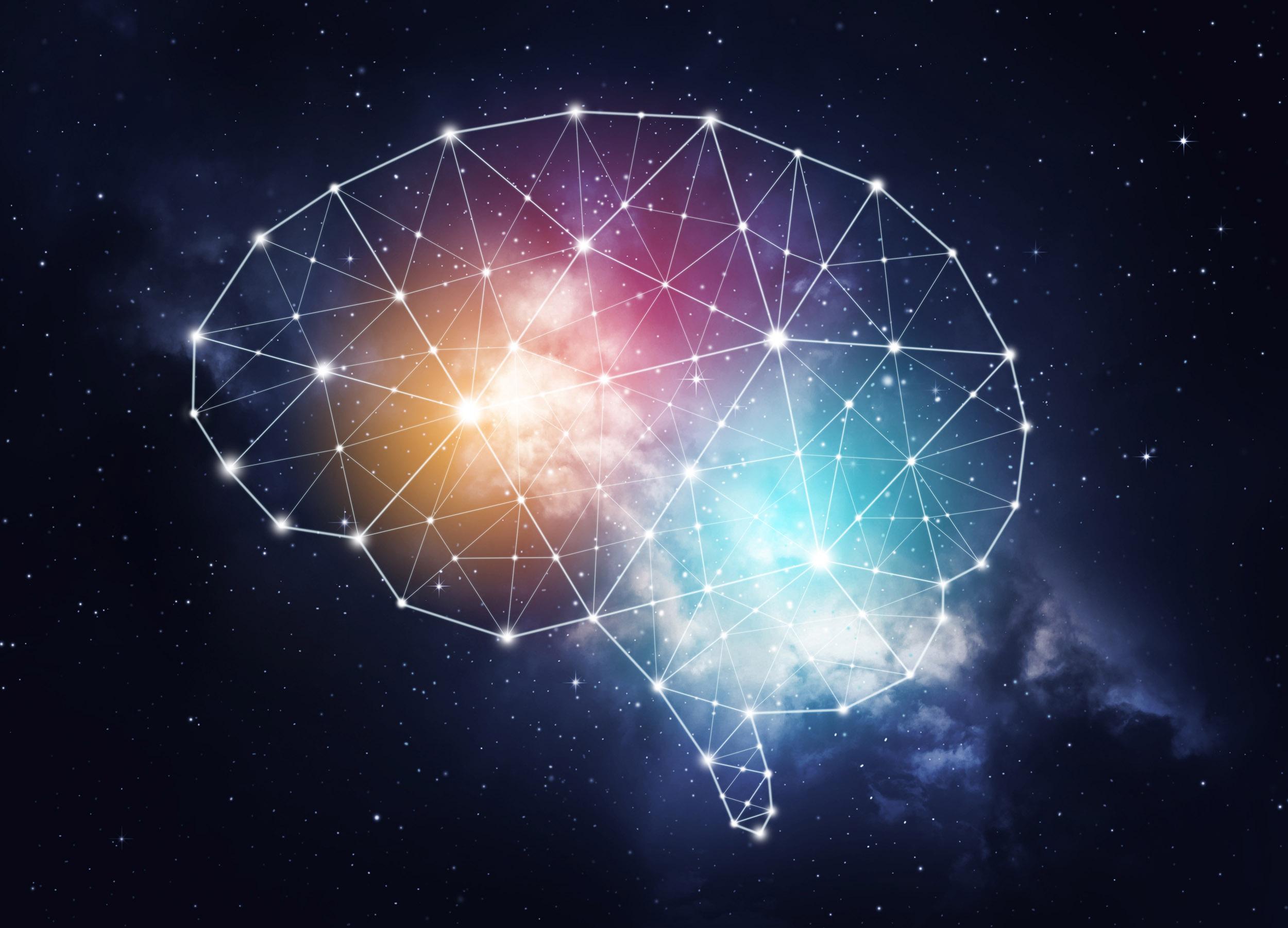 Allen brain atlas - A Revolutionary Approach to Brain Science