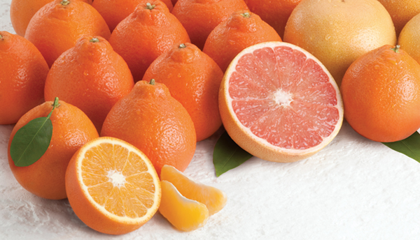 Honeybells_Glamour.250105006_large.jpg