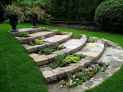 landscaping-ideas-backyard1.jpg