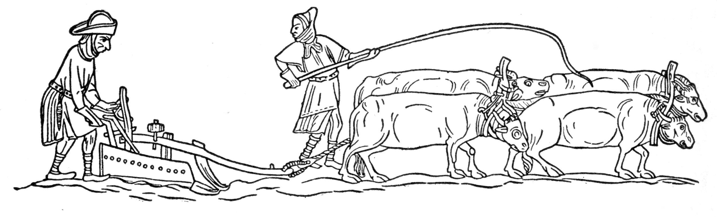 medieval plow.jpg