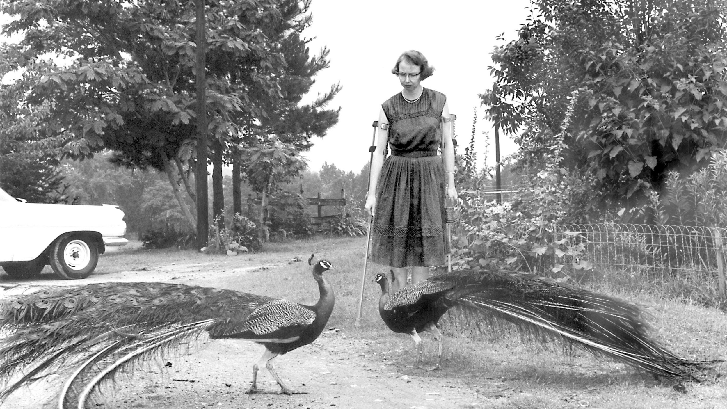 Flannery O'Connor at home in Milledgeville, 1962