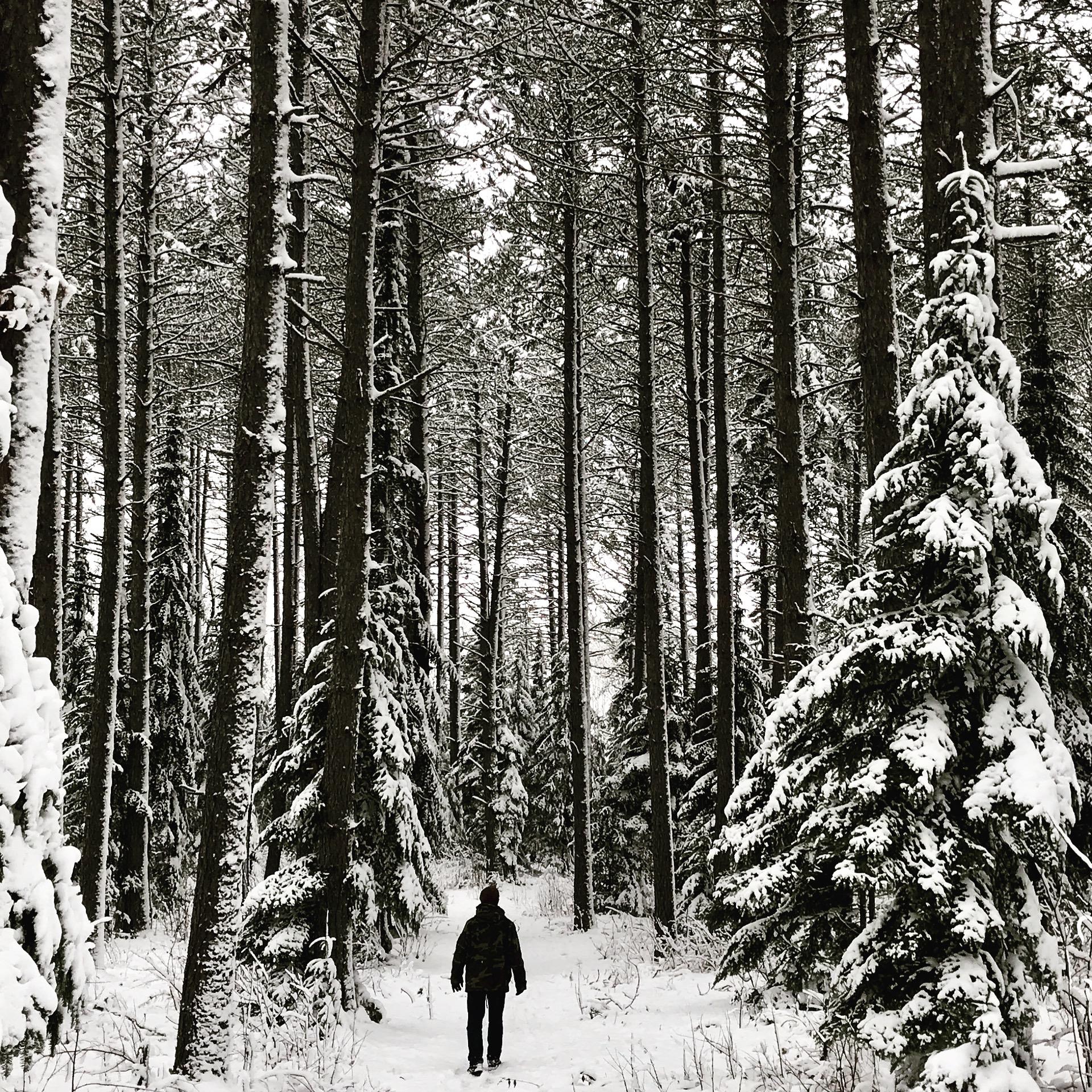 Amy Brummond – @pinezenpottery
