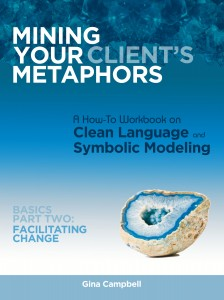 Mining your client's metaphors part 2