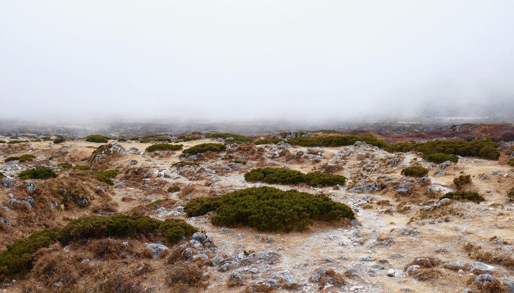 Valley beneath the fog
