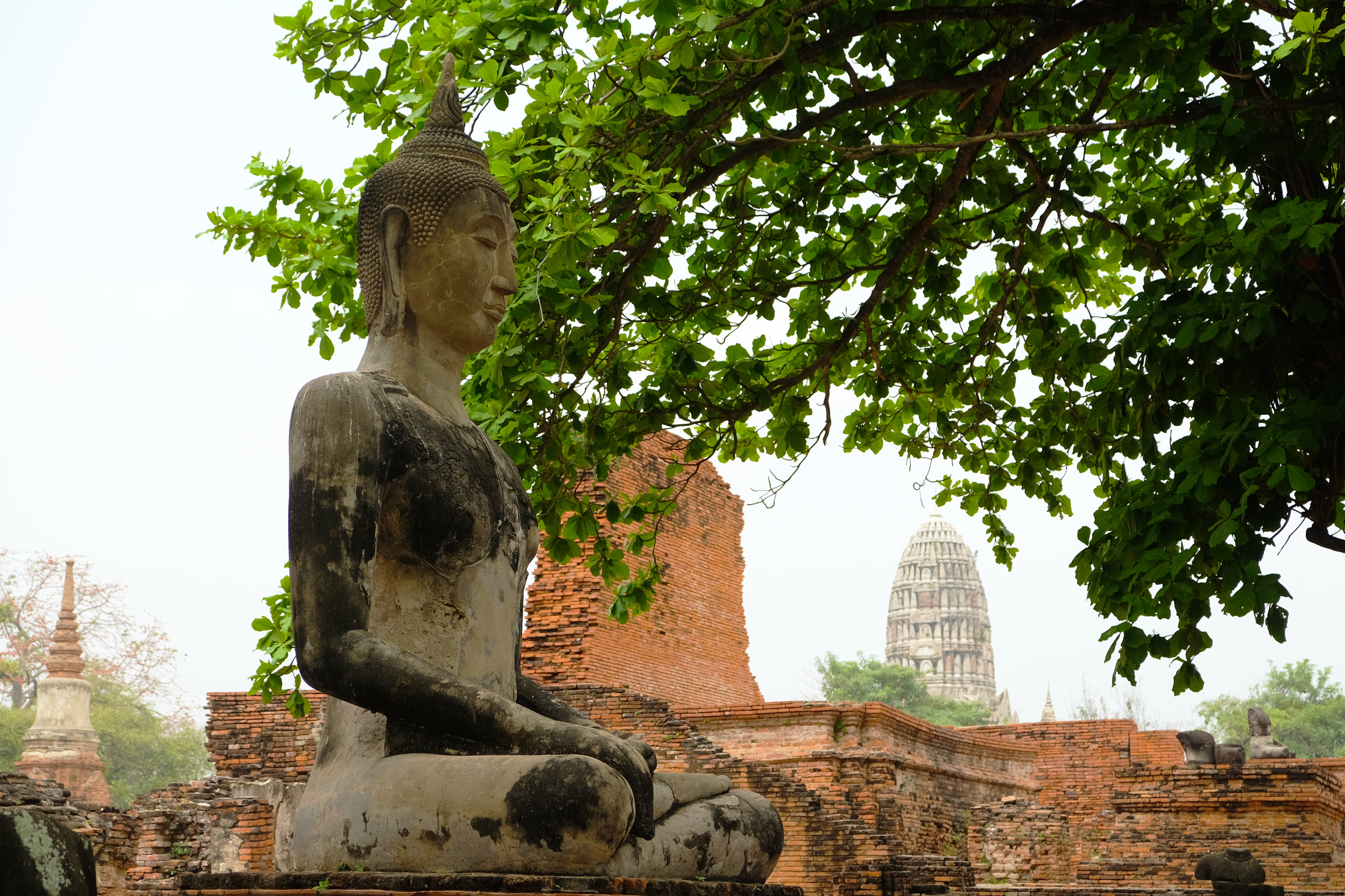 Buddha looks on at Ayutthaya, the capital of Siam from 1351 to 1767