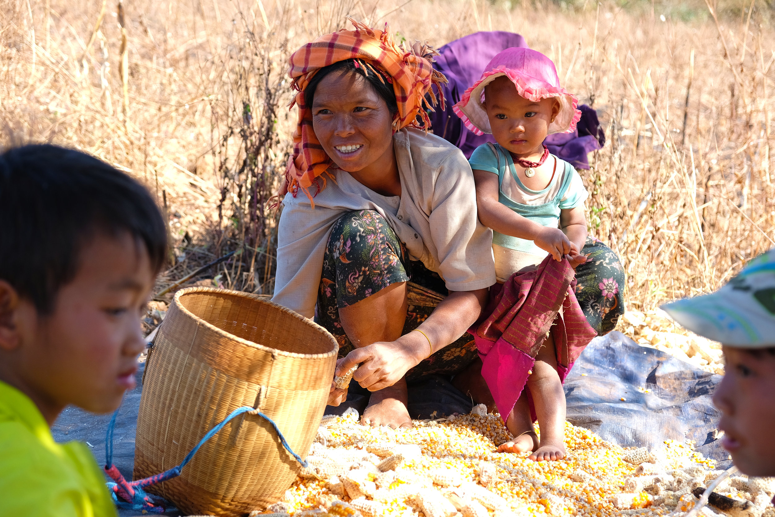 Tantu tribeswoman shucking corn with her children for 40 cents/kilo. Tantu women wear colorful headscarves because they believe women to be dragons.
