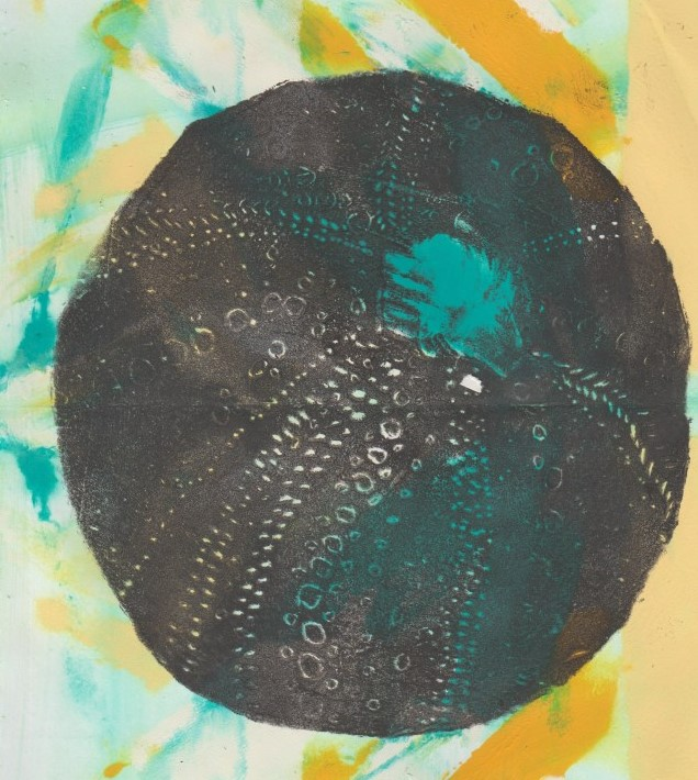 sea-urchin-print7.jpg