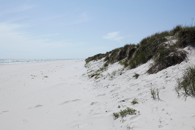 nordiska-kok-sandhammaren-strand-osterlen.jpg