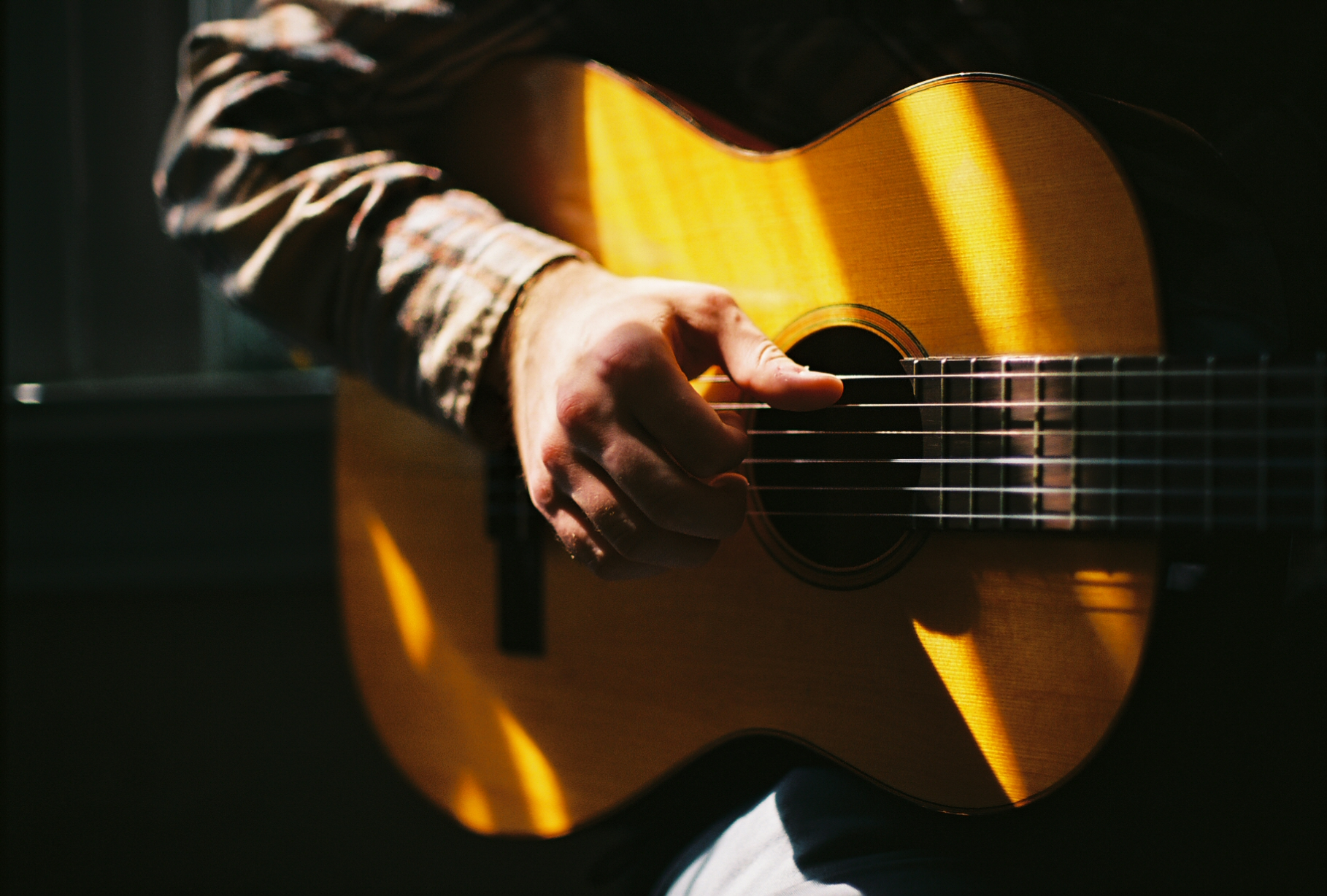 taylor james donskey - Music & Stories