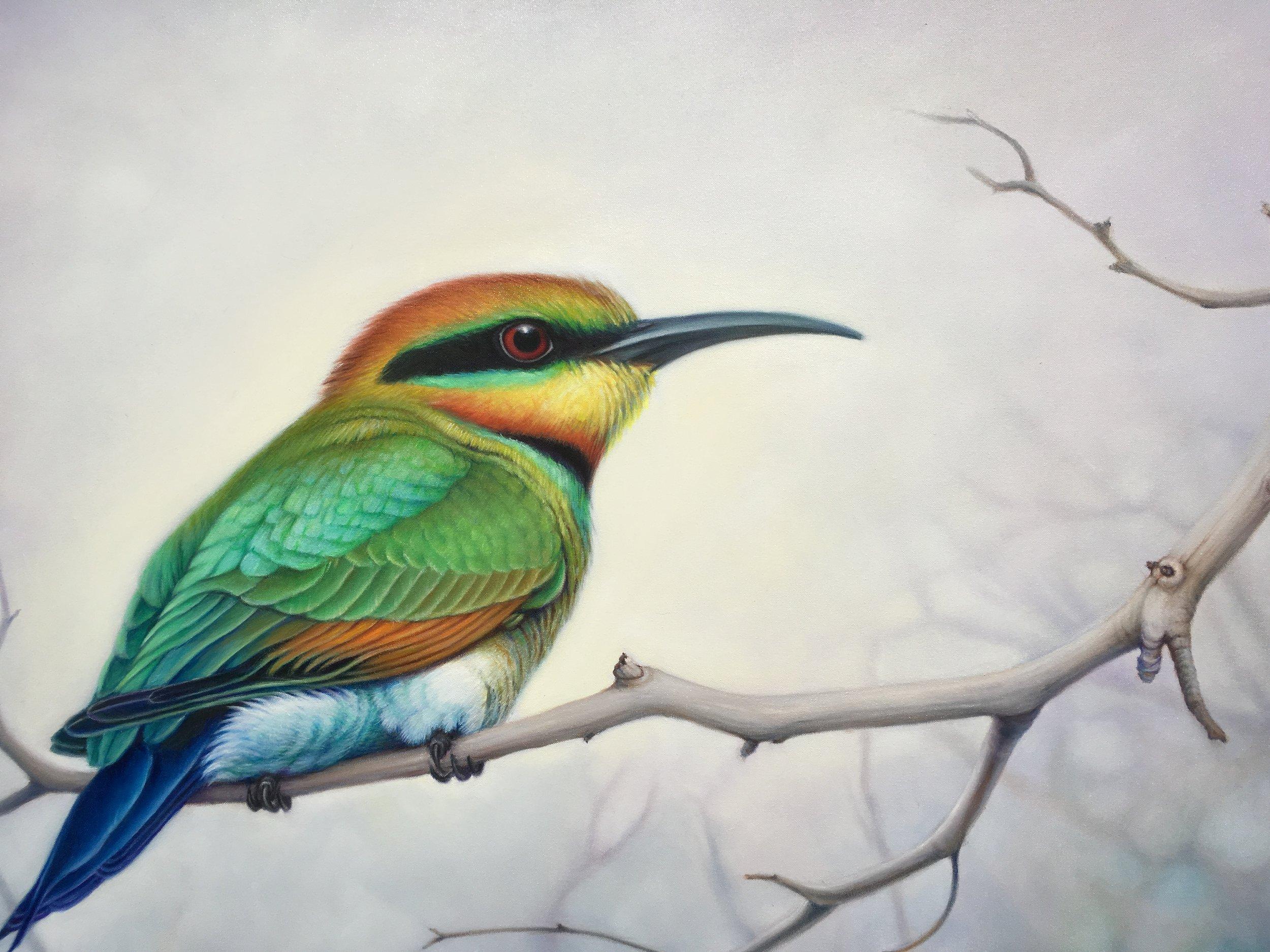 Susan Hood,Rainbow Bee Eater,2018,Oil, 140cm x 100cm.JPG
