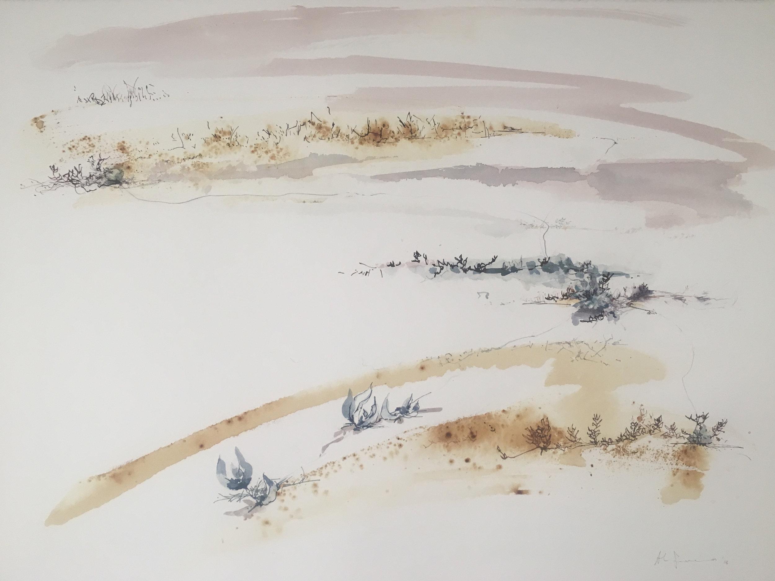 Mandy FerreiraI_Dirk Hartog Island1_2018_Watercolours pencil on paper_990x800cm. .jpg