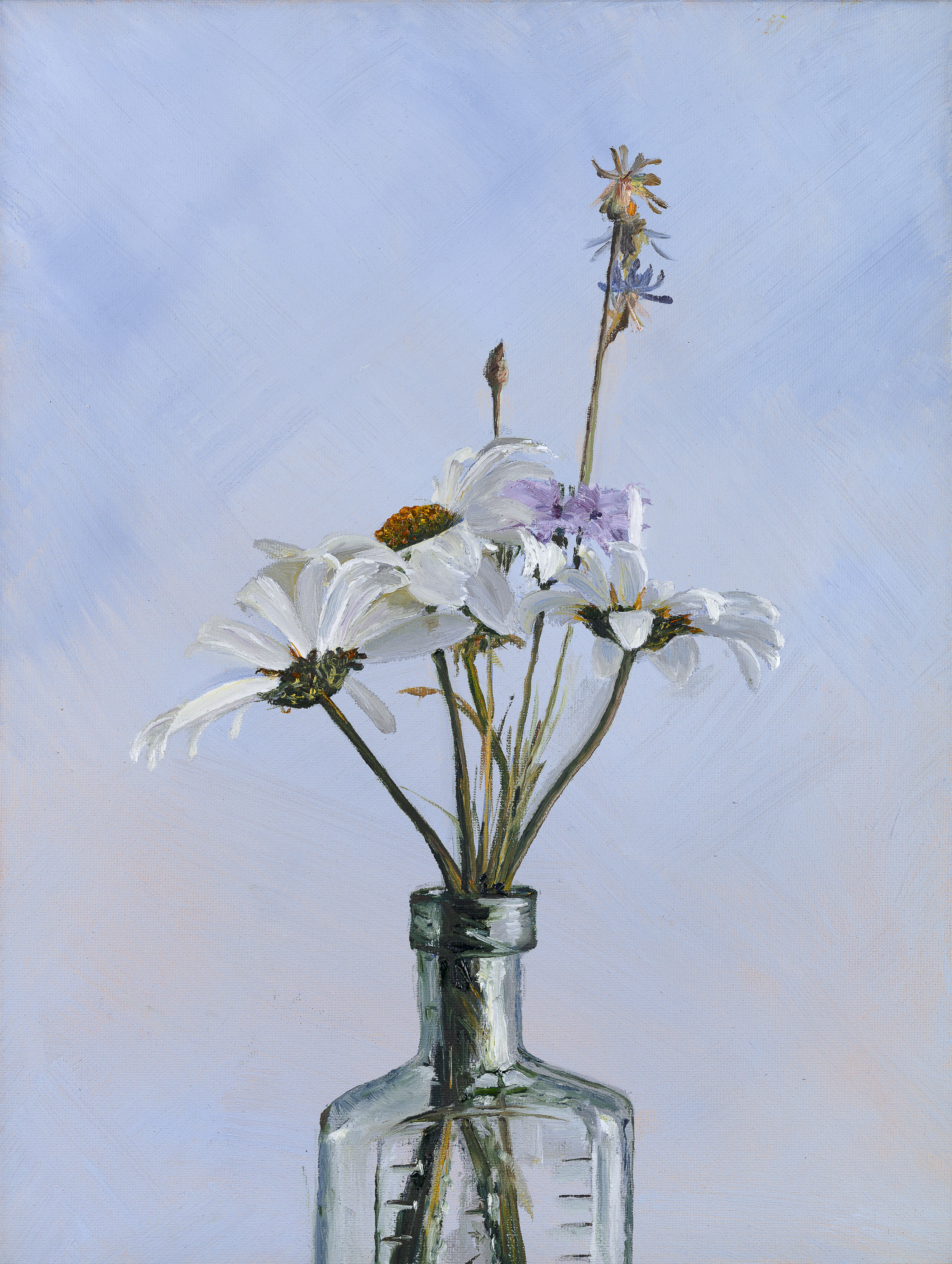 Heidi Mullender_Daisies and linen_2018_oil on canvas - 10 by 14in.jpg