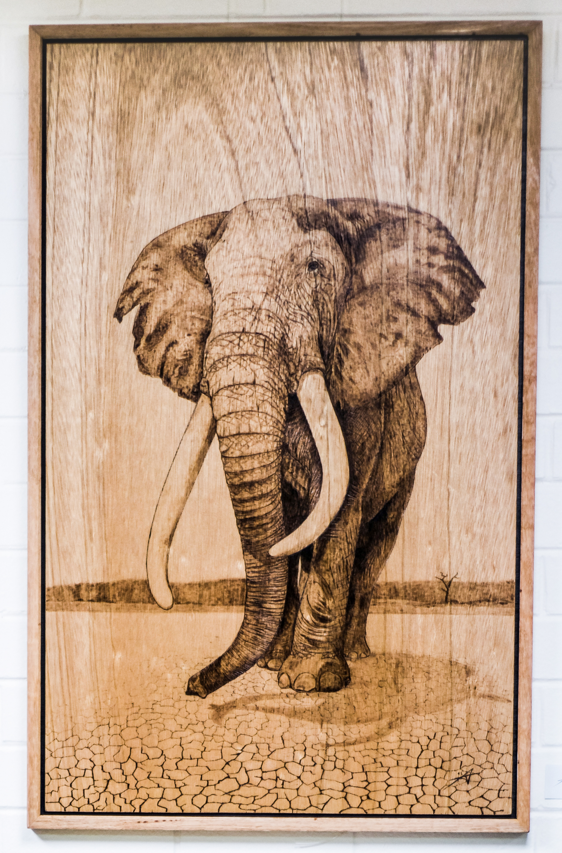 BobbieMcCain_August_2018_pyrography_66x114cm.jpg