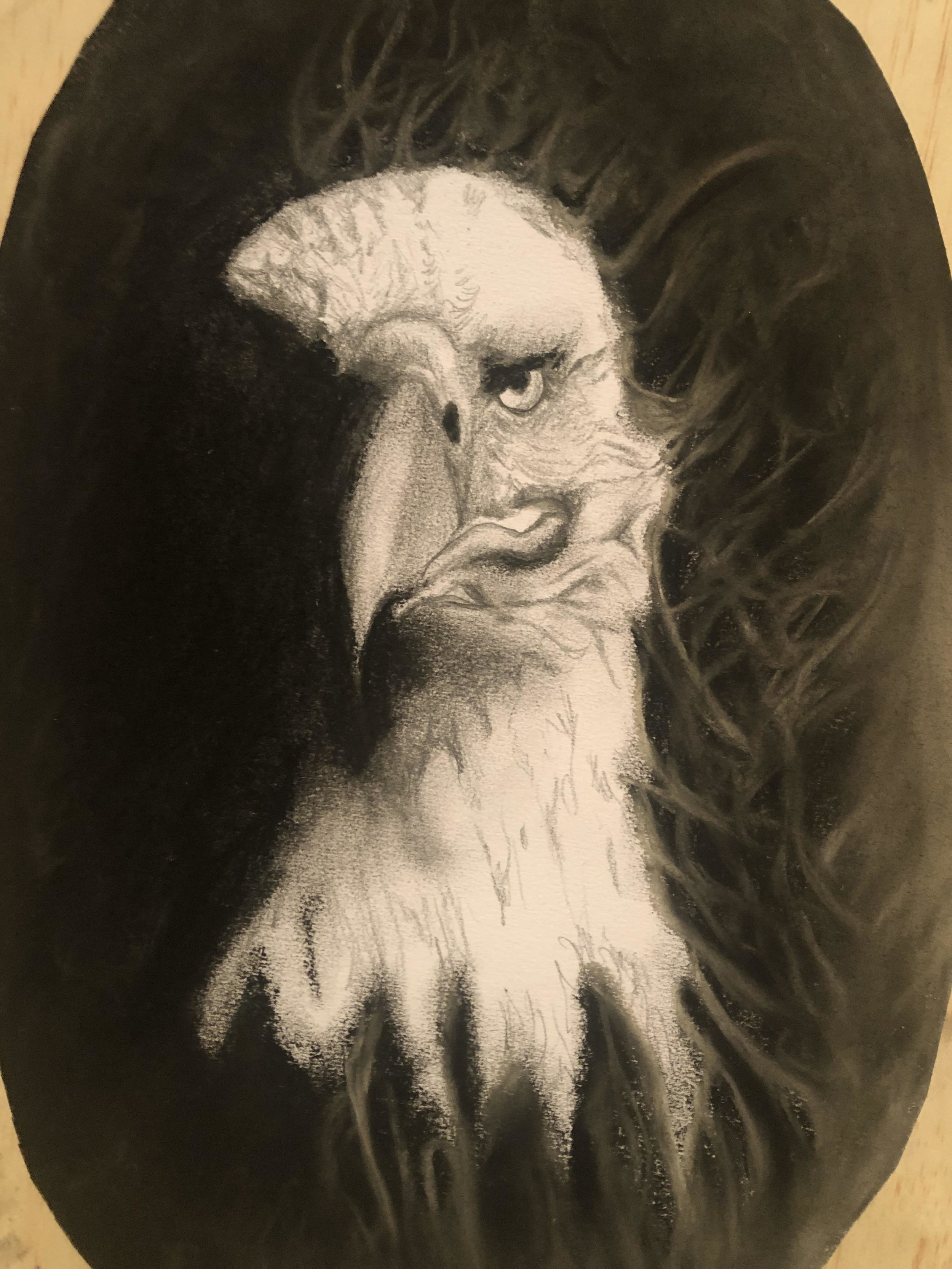 AngeBrewster_Eagle_2019_Charcoal_A3.jpg