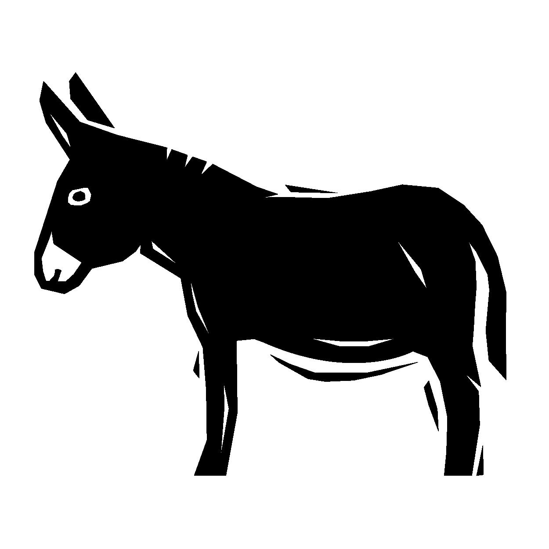SCF_Website_animals-16.png