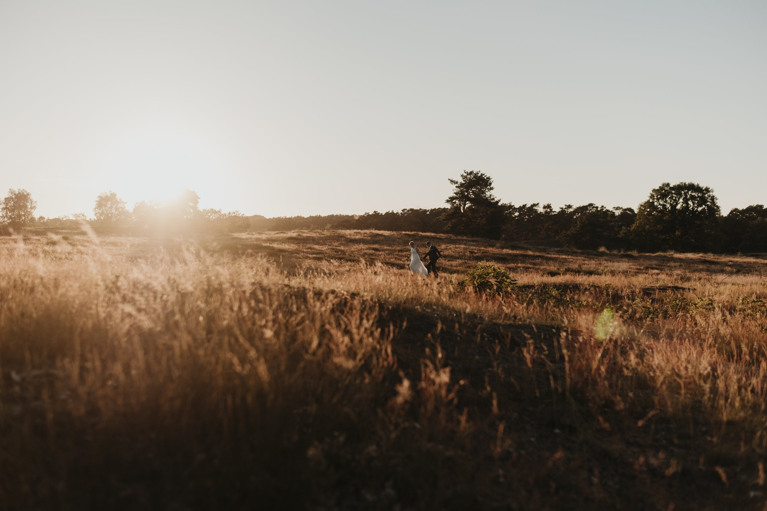 Kleiner Spaziergang durch die Heide im strahlenden Sonnenschein.