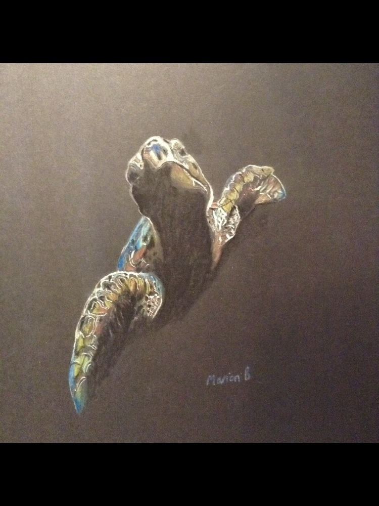 'Swimming Free' by Marion Burton Medium:Coloured pencils Size: A4 Year created: 2016 Facebook: ChemobrainArt