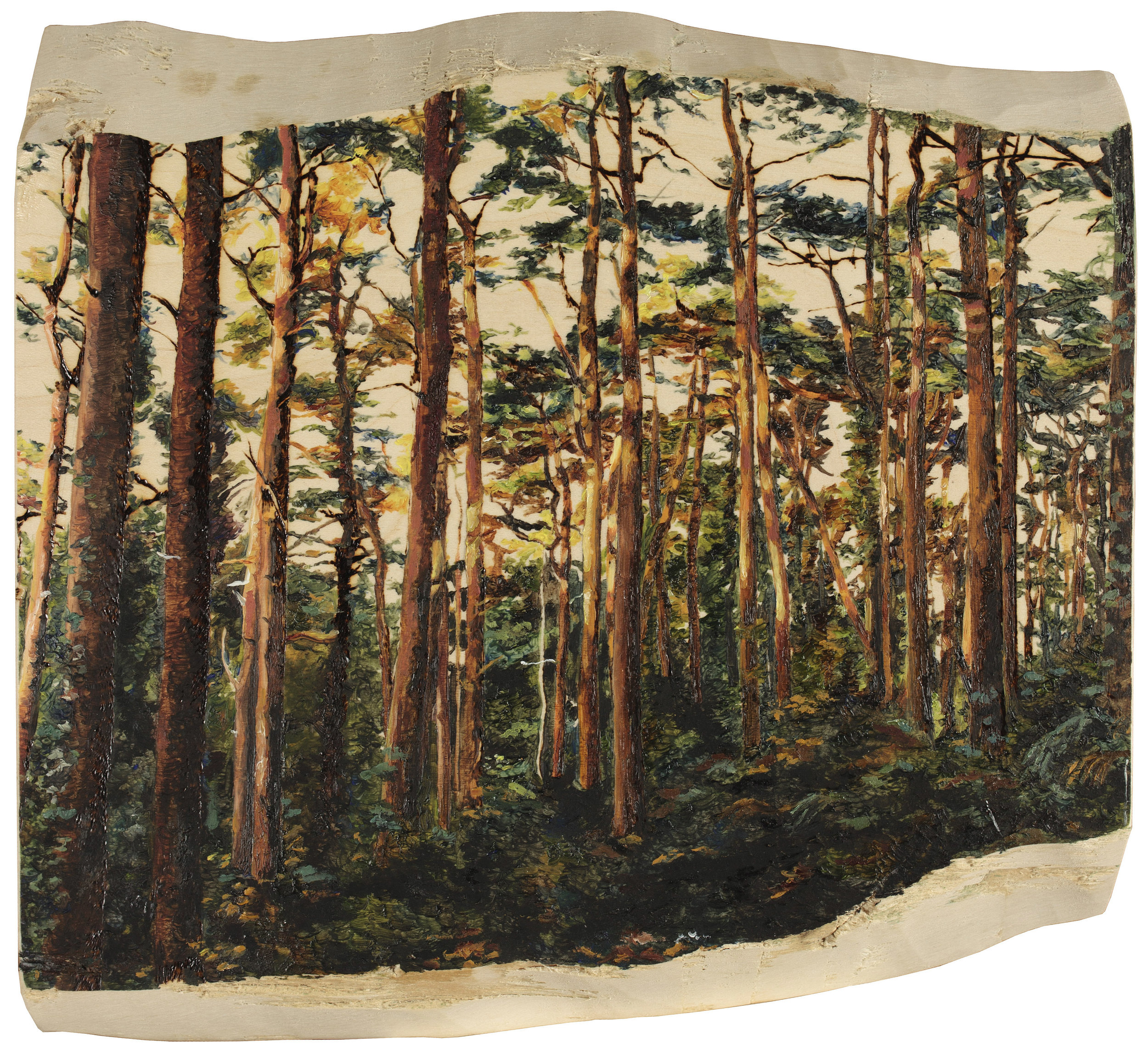 Tilia Holmes, Pine Forest, Pyrography and Oil paints on Wood, 27cm x 30cm x 3cm,  https://www.instagram.com/tiliaholmes/