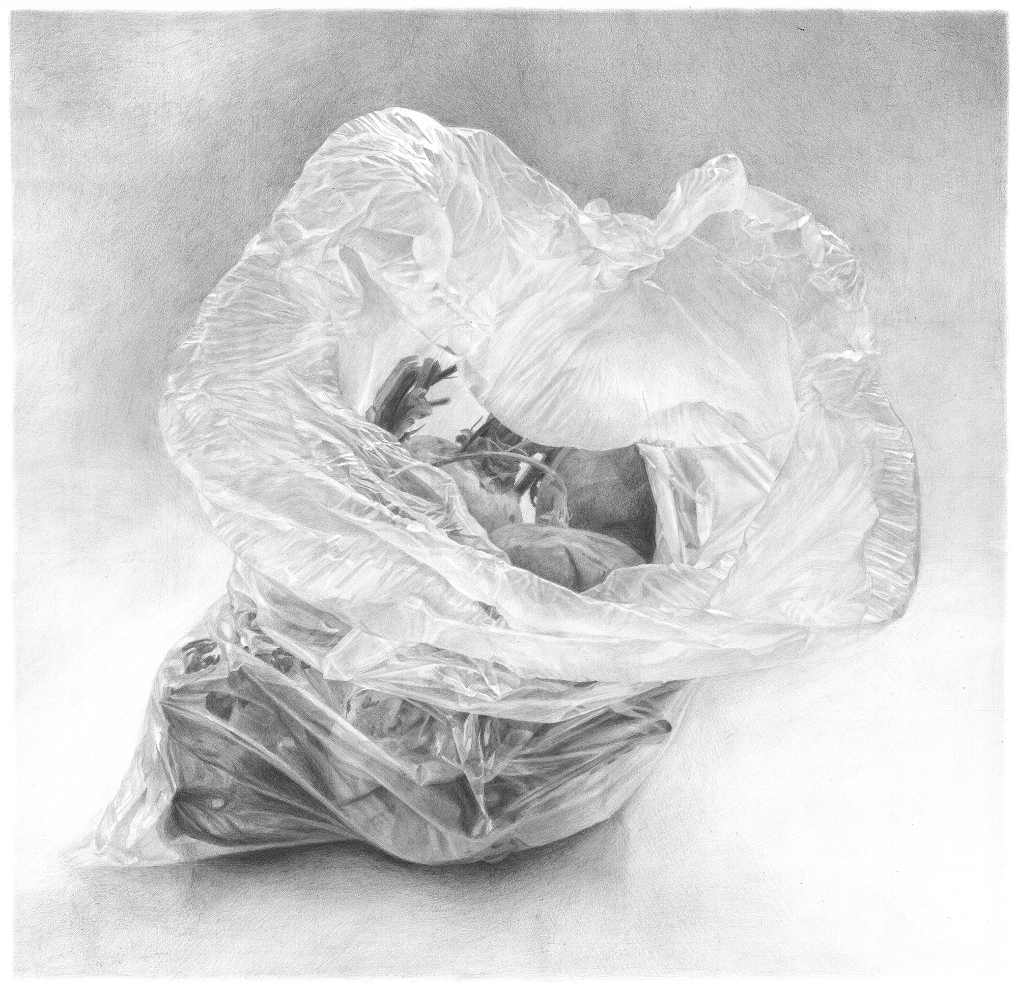 Ilana Dotan, Plastic bag with beets, pencil on paper, 50 * 50 * 1,  http://www.ilanart.co.il