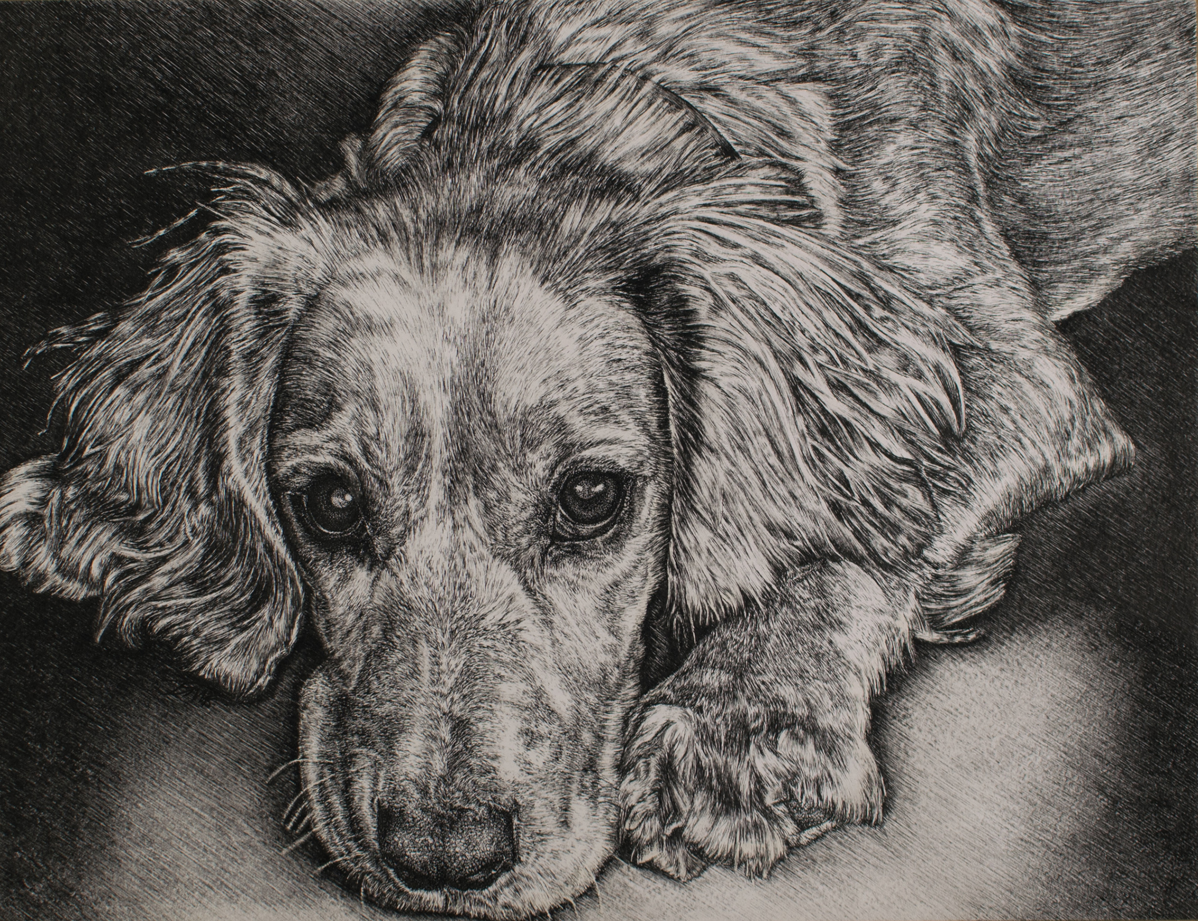 Jane Elizabeth Martin, Harriet 3, Ink on watercolour paper, 30.5cm x 40cm x 0.2cm,  http://www.janeelizabethmartin.com