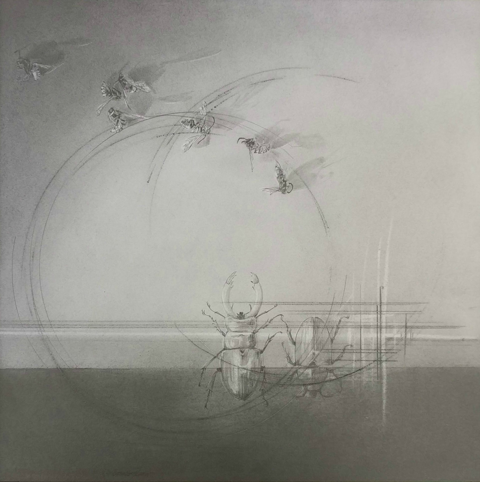 Louisa Crispin, FlightPath ix, Graphite on Bristol, 22 x 22 x 0,  https://www.louisacrispinart.co.uk/