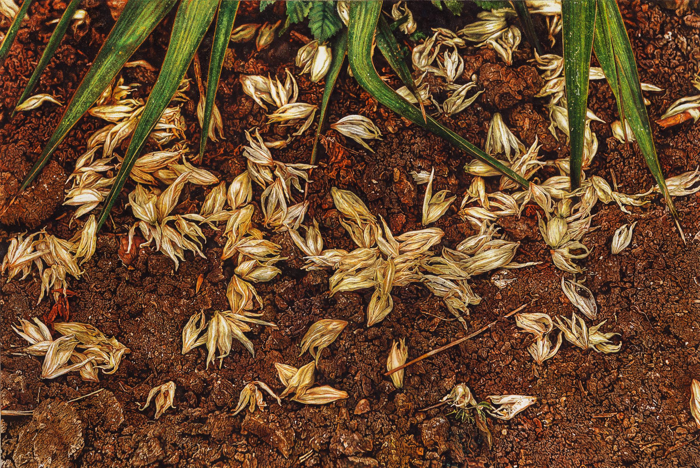 Nadija Kudryavtseva, Fallen petals of yucca, Watercolour and acrylic on paper, 77 x 52,5 сm.,  https://nkudryavtseva.wixsite.com/nadijan-art