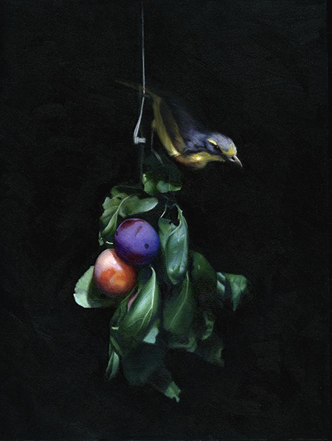 Chris Polunin - Still Life with Bird on Plum Branch.jpeg