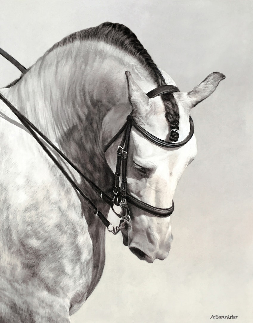 Ali Bannister  The Spanish Horse  Pastel on Pastel Card, 35 x 26.5 cm  http://www.alibannister.com