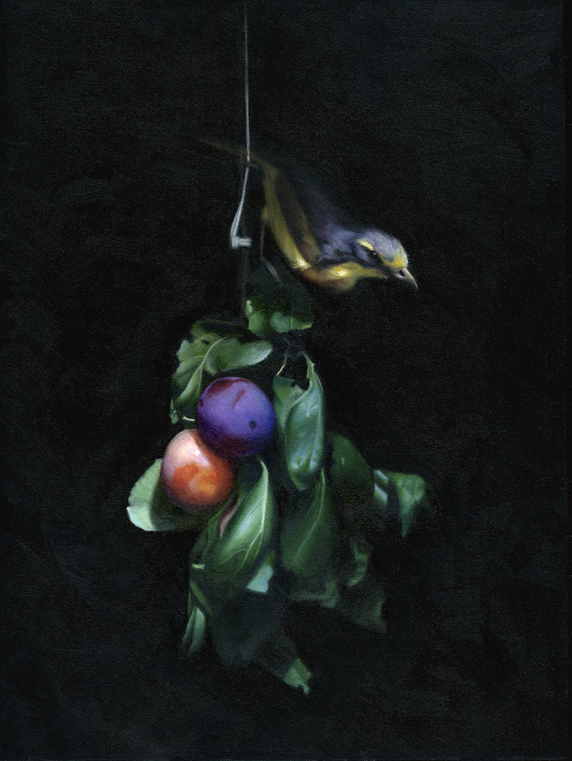 Chris Polunin  Still Life with Bird on Plum Branch  Oil on canvas, 30 x 40 cm  http://www.chrispolunin.com