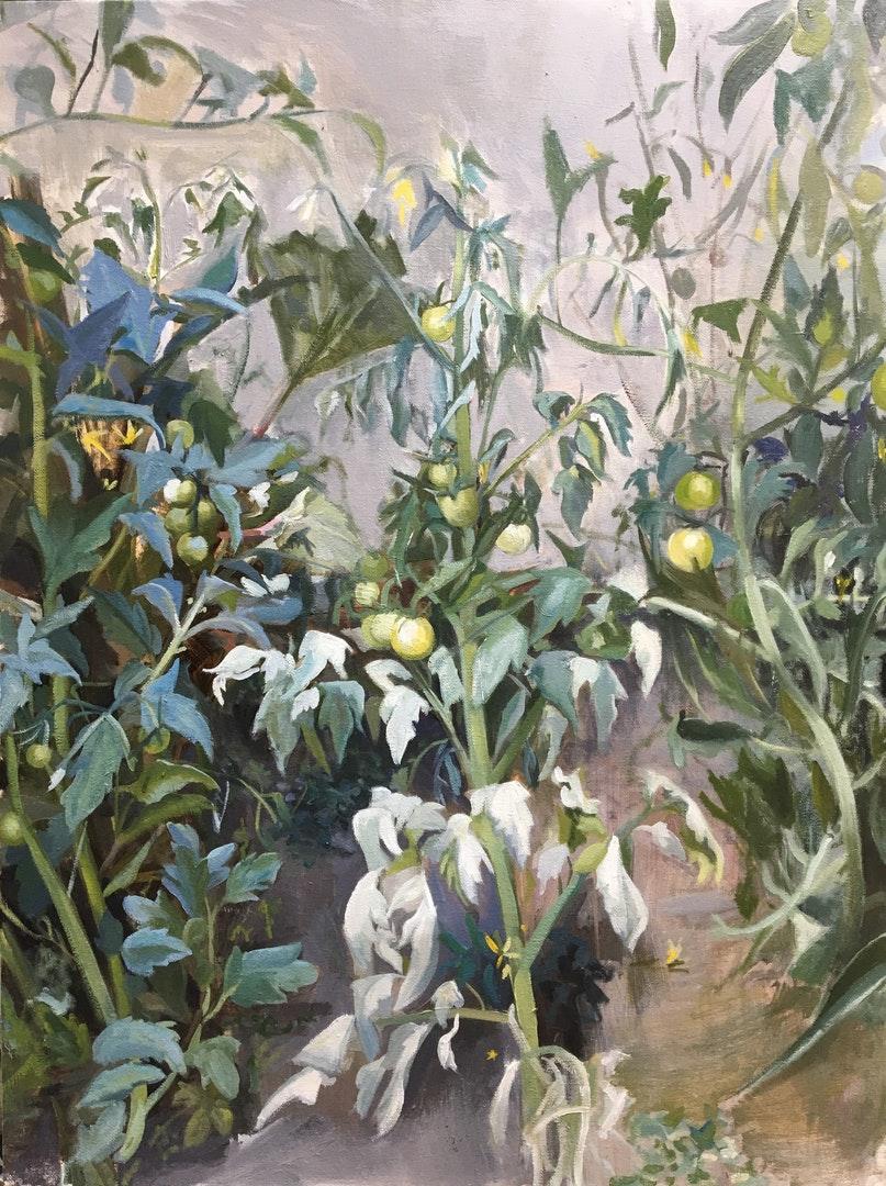 Ollie Tuck  Vines  Oil on Canvas, 80 x 60 x 2 cm  http://www.ollietuckart.com