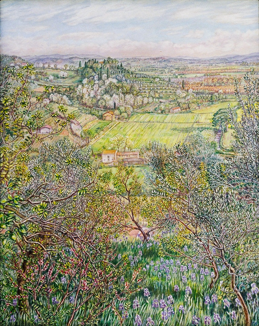 Patricia Buckley  View with irises Treggiaia Tuscany  Oils on canvas, 51 x 41 x 2 cm  http://www.patriciabuckley.co.uk