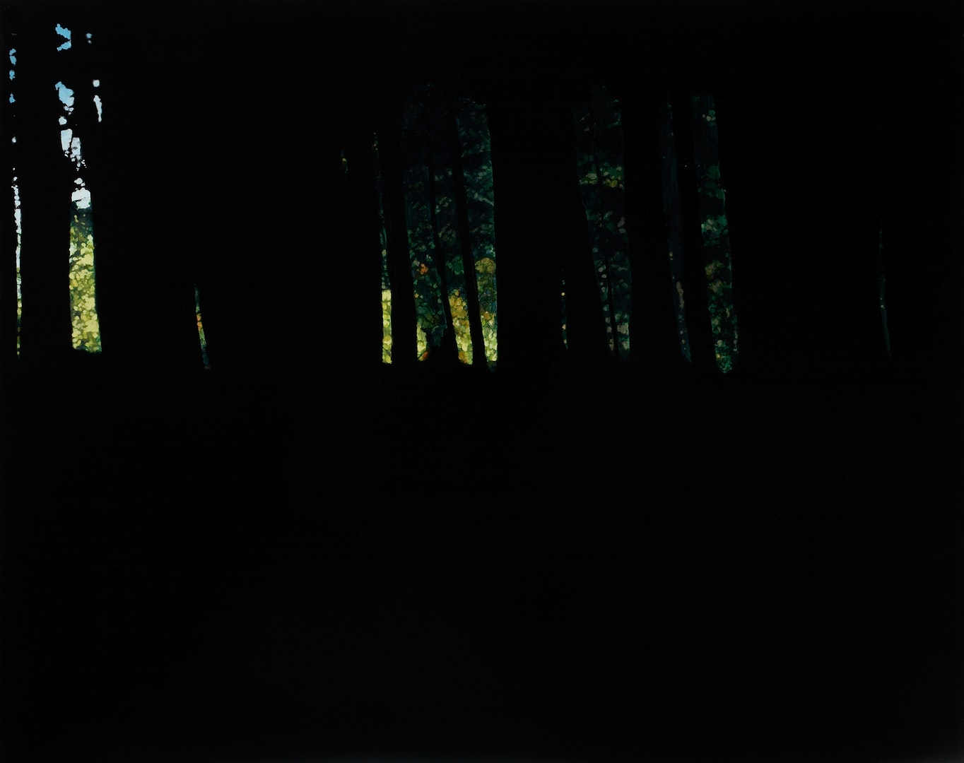 Rachel McDonnell  Dark Woods III  Oil and gesso on canvas, 80 x 100 x 4 cm  http://www.rachelmcdonnell.com