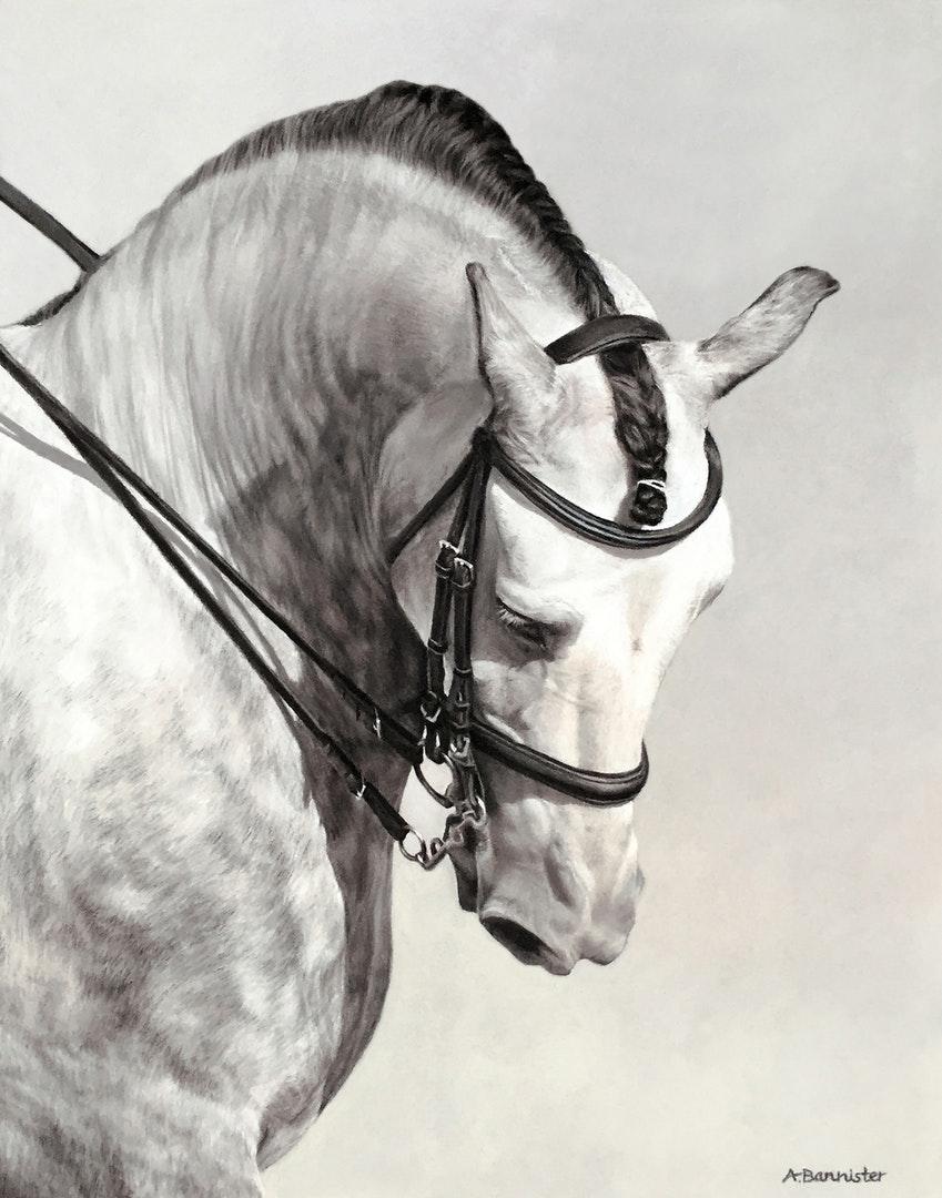 Ali Bannister. The Spanish Horse.jpg