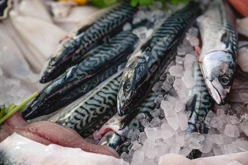 Clifton Sea Food Company - landscape5s.jpg